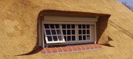 dakkapel rieten dak vervangen